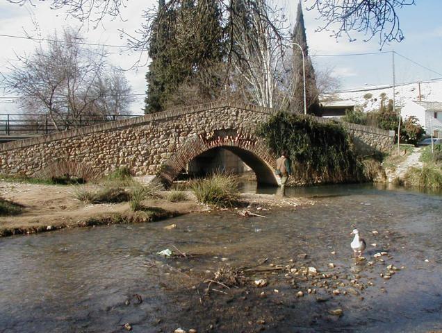 Puente-romano-riofrio
